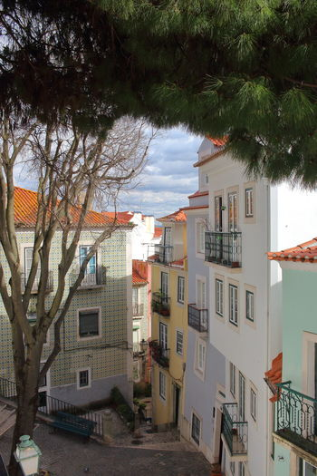 Alfama Lisbon - Portugal Lisboa Portugal Lissabon, Portugal Streets Of Lisbon EyeEm City Lover Building Exterior Architecture Built Structure Tree Building Plant Residential District City No People Nature Day House Cloud - Sky Outdoors Sky Town Growth Window Roof Apartment TOWNSCAPE