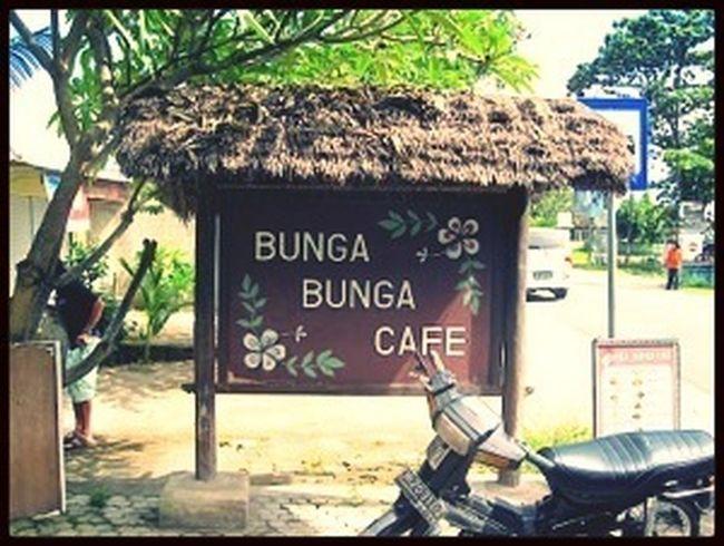 Indonesia, Lombok Lombok Bungabunga Cafe