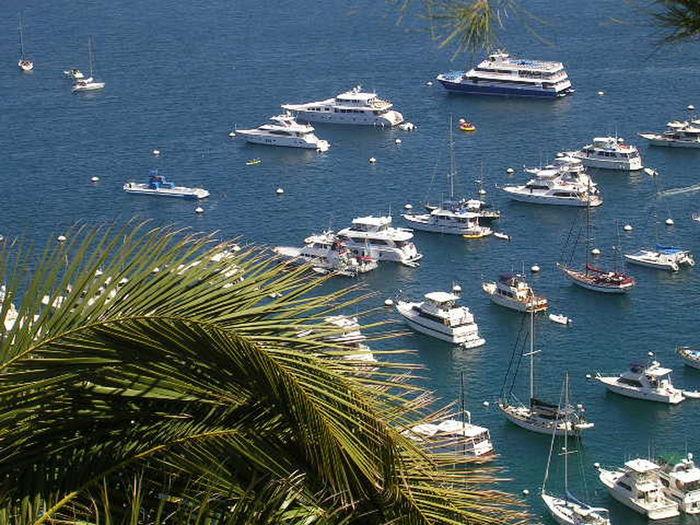Trip to Catalina Island Trip To Catalina Island