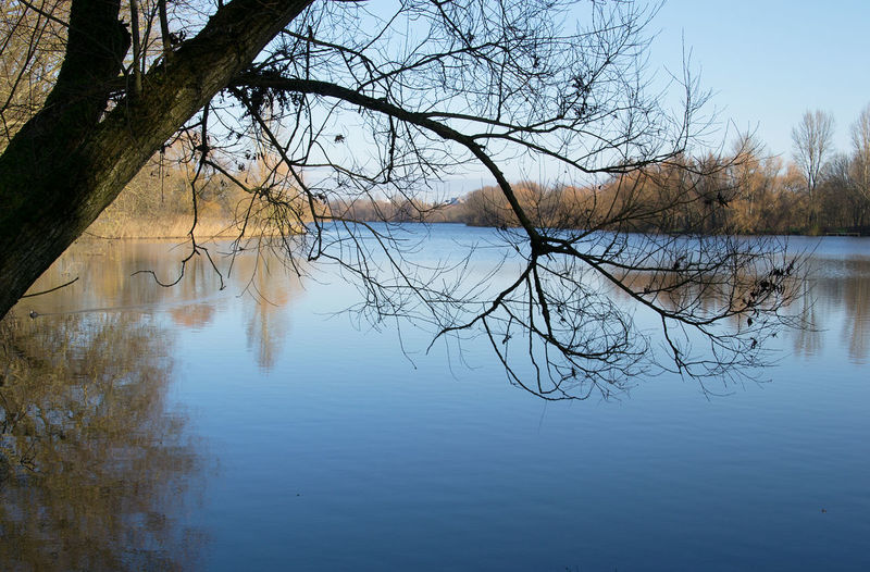 November Wolfenbuettel Bare Tree Beauty In Nature Branch Cold Temperature Day Lake Landscape Nature No People Outdoors Reflection Scenics Sky Standing Water Sunshine Tranquil Scene Tranquility Tree Water Waterfront