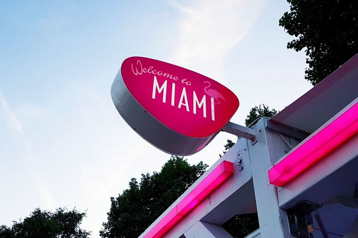 Pink coloured illuminated Wellcome Sign: wellcome to Miami. Maschseefest Hanover Wellcome Sign Miami Sign Miami Blue Sky White Clouds Road Sign Tree Communication Text Western Script Sky Capital Letter Information Information Sign