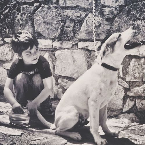 Impossible Moments with two of the most happiest creatures on earth.. Children Dog
