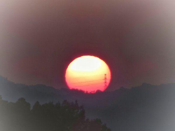 朝日 日の出 太陽 山 鉄塔 電線 Sun Sunrise Morning Morning Sun Morning Sky Morning Glory Mountain Steel Tower  Tree Nature Beauty In Nature Sunset Beauty In Nature EyeEm Best Shots EyeEm Nature Lover Gradation グラデーション Good Morning Pink Color