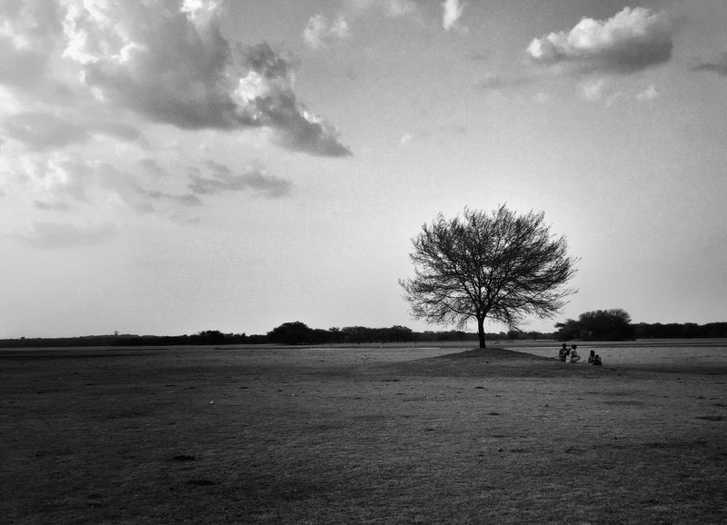 Day 273. Landscape Tranquil Scene Tranquility Tree Scenics Sky Field Nature Distant Beauty In Nature Tourism Non-urban Scene Travel Destinations Vacations Cloud - Sky Rural Scene Day Solitude Monochrome Photography Remote IPhone Iphone6 Iphoneonly IPhoneography ShotOniPhone6