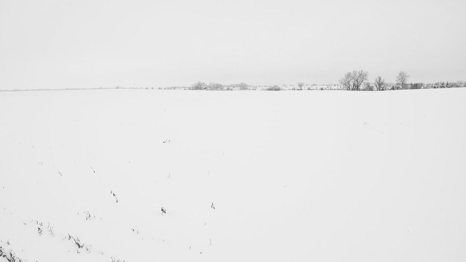 Visual Journal December 4, 2016 Western, Nebraska (Fujifilm Xt1,Fuji 10-24/f4 OIS) edited with Google Photos. America Beauty In Nature Camera Work Cold Temperature Eye For Photography EyeEm Best Shots MidWest Minimalism Minimalobsession My Neighborhood Outdoors Photo Diary Remote Location Rural America Seasons Selects Small Town America Small Town Stories Snowing Storytelling Taking Photos Visual Journal Winter Wonderland Winterscapes Wintertime