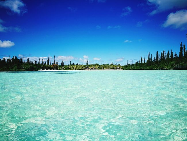 Newcaledonia Iledespins Nuovacaledonia Sea Sky Vacations Idyllic Water Blue Travel Destinations Scenics Tranquility Tranquil Scene Tree Nature Day Cloud - Sky No People Beauty In Nature Travel Outdoors Island Life