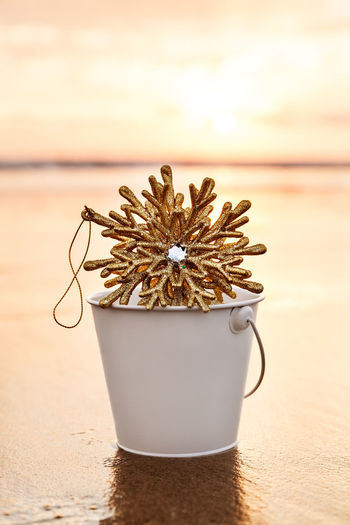Decoration in bucket on shore at beach
