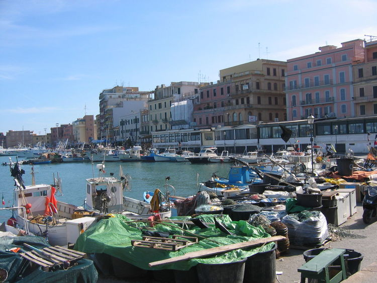 Citty Building Exterior Sea Harbor Italy❤️ Anzio Sunny Day Travel Destinations Building Exterior Commercial Dock Day Nautical Vessel Port Of Anzio Italy Sailboat Transportation Water Dock Calm Marina Anchored Anchor - Vessel Part Boat Sailing Boat Tall Ship Port