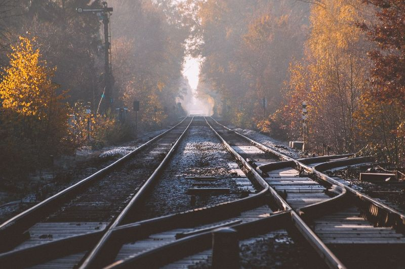 Rail junction in autumn