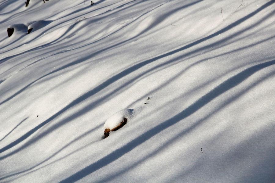 shadows on the snow Geometry Low Winter Sun Natural Pattern Pattern Shadow Shadows On The Snow Slanting Shadows Snow