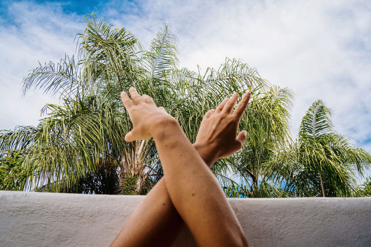Low section of person hand on palm tree against sky