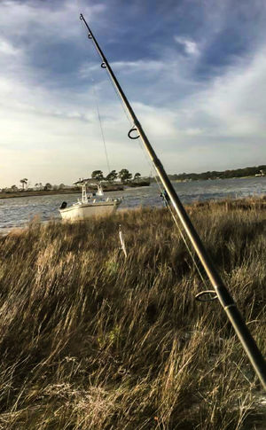 Finding New Frontiers Nautical Vessel Landscape Sailing Ship Water Beach Nature Fishing Secret Places Tall Grasses Tall Grass Blowing In The Wind Windy Day Adventure Outdoors Waterfront