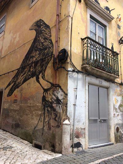 2016 Graffiti Art Graffiti Bigbird