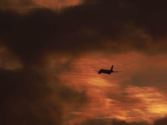 Guten Flug🤗 Flight Into Dramatic Sundown Airplane Transportation Travel Journey Plane Dramatic Sky Tranquility ForTheLoveOfPhotography My Soul's Language Is📷 For My Friends 😍😘🎁 Summertime 🌞 Simple Beauty Beautiful Dramtic Sky😍 Sommergefühle
