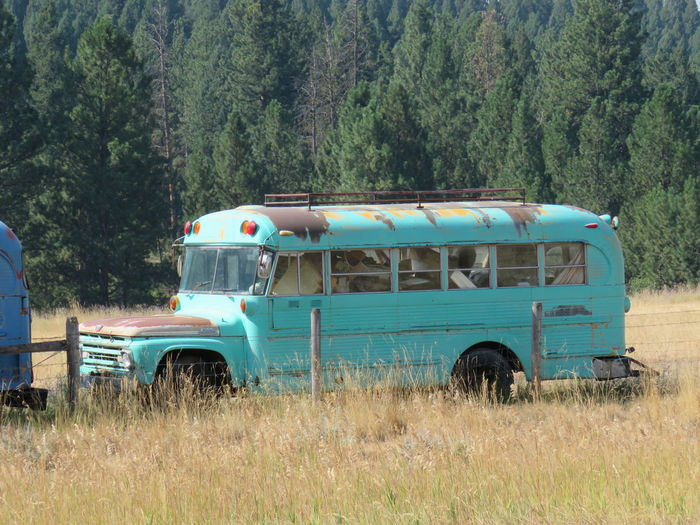 Bus on field against trees