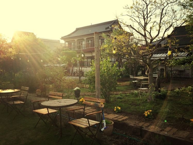 i wanna eat here with my friends in early summer Cafe Ibaraki