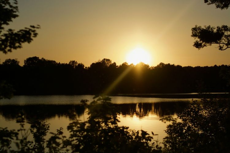 Landscape_Collection Sunset_collection Beauty In Nature Idyllic Lake Landscape Lens Flare Nature No People Non-urban Scene Outdoors Plant Reflection Reflection Lake Scenics - Nature Silhouette Sky Sun Sunbeam Sunlight Sunset Tranquil Scene Tranquility Tree Water