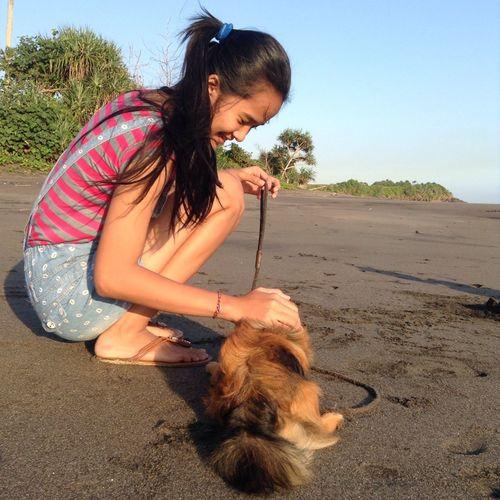 Dinda n mimi Beach Dogs IPad Mini