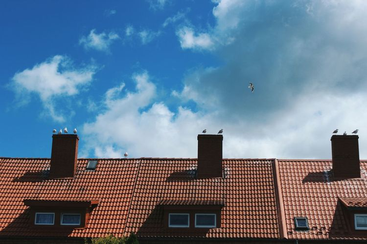 Low angle view of seagulls perching on chimneys against cloudy sky
