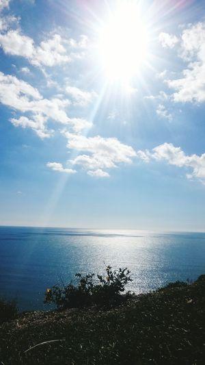 Glitch seven sisters cliff & beach sun plant sea