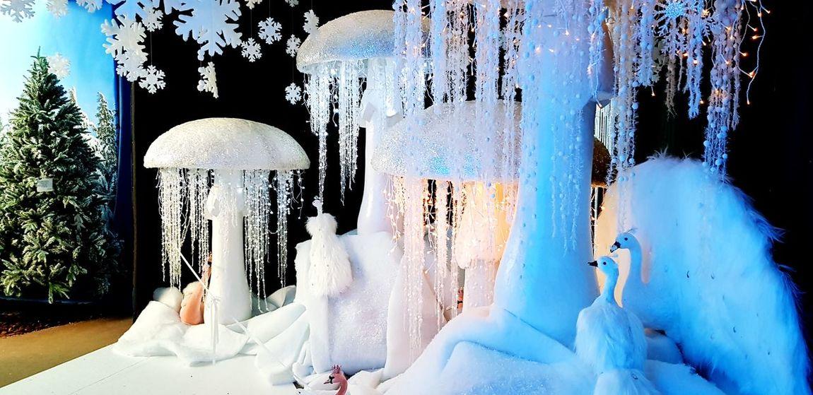 Natale 2017 Ghiaccio Ghiaccio Inverno 2017 Funghi Freddo Architecture Luci Blue Bianco