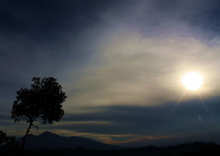 silhuette of tree and Mt. Galunggung Sunrise Silhouette Beauty In Nature Day Low Angle View Nature No People Outdoors Scenics Silhouette Sky Sunset Tasikmalaya Tranquil Scene Tranquility Tree