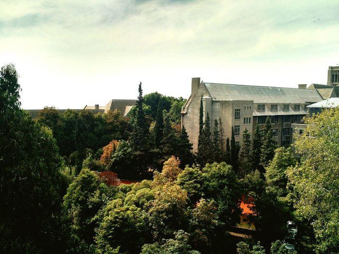 Universidad Santa Maria Utfsm Valparaiso, Chile Placeres Nature First Eyeem Photo
