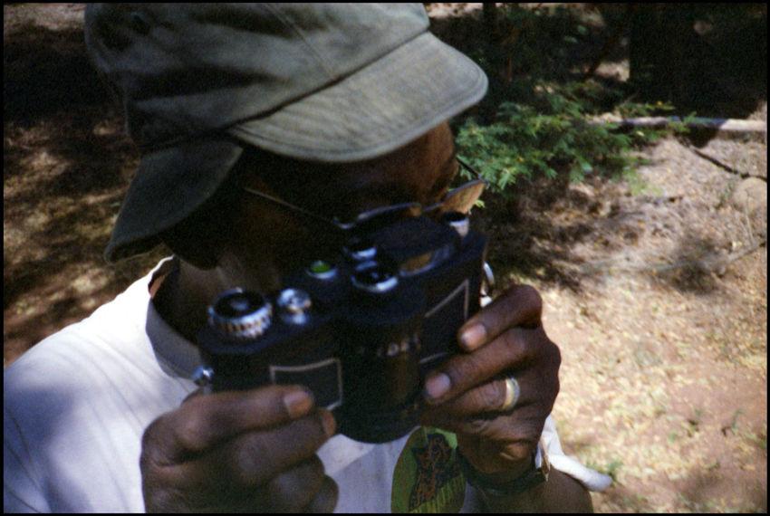 pendjari national park Africa Analogue Photography Benin Burkina Faso Grass Guide Heat Outdoor Pendjari National Park Safari Savanna Shadow Summer