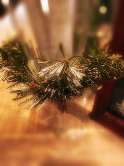 A little bit of Christmas spirit tied around a glass🎄 Christmastree Christmas Decorations Christmastime Christmas Christmas Lights Christmas Wreath Joyeux Noël**Marry Chrismas**Feliz Natal Wreath Advent Wreath Glass Art Glass Holidays Holiday POV