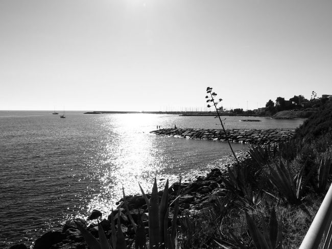 Clear Sky Sky Water Sea Nature Tranquility Horizon Over Water Tranquil Scene Outdoors No People Day Silhouette Scenics Beauty In Nature Beach Zörk