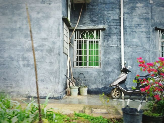 Adventure in Xinyi near Maoming China ! I saw this inspiring home on a walk around the village. Houses Windows Guangdong On A Walk Traveling Travel