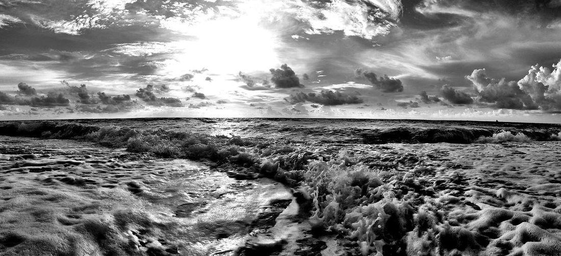 Oceanwise. NEM