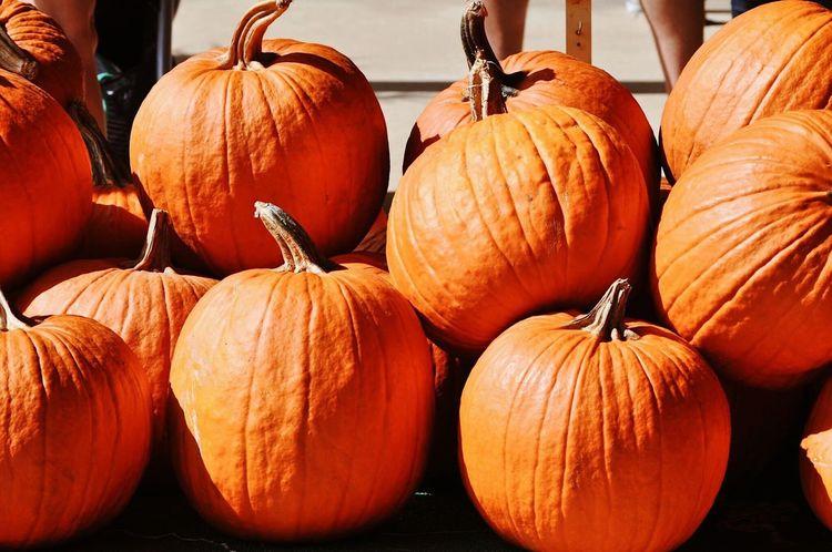 Fall Pumpkins Pumpkin Season Getty Images Orange Getty X EyeEm Images Getty X EyeEm