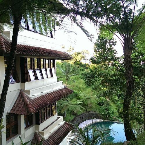 Balicamp Bali Travel HTCButterflyS