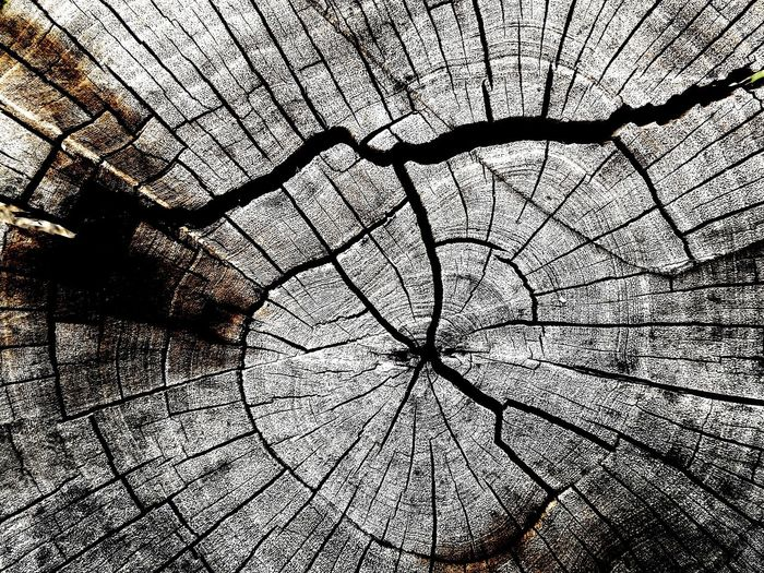 Pattern Pieces Wooden Texture Nature Is Art Scratched And Cracked Wood