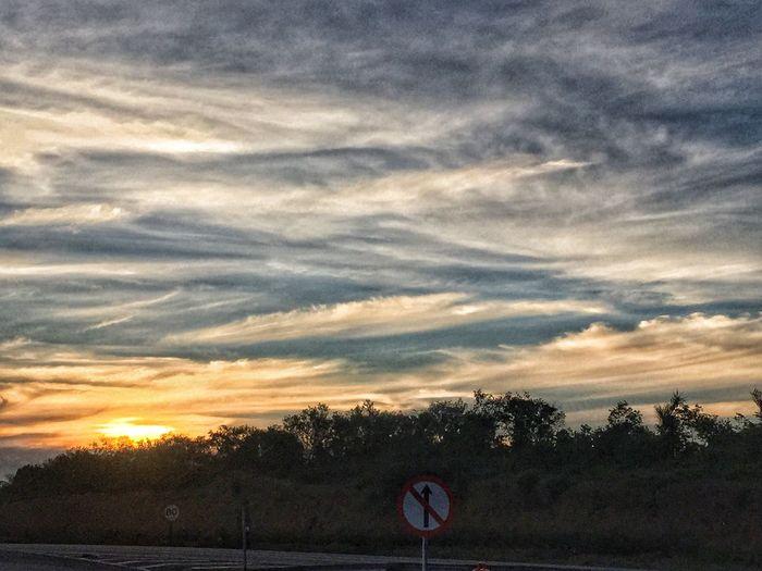 Pordosol Cielo Sky Céu Natureza Cloud - Sky Tree Sky Tranquility Sunset Nature Beauty In Nature Scenics Day