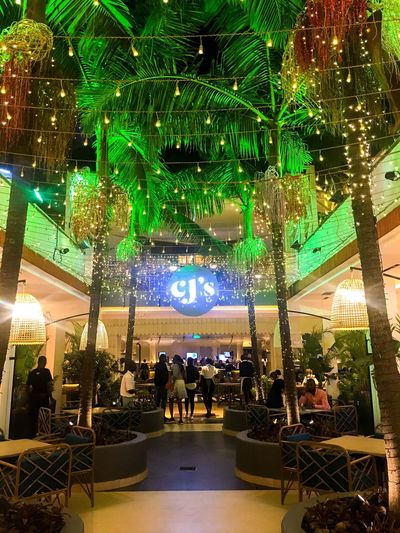 Group Of People Illuminated Lighting Equipment Crowd Night Real People Men Built Structure Lifestyles Architecture Leisure Activity Adult Travel Tree Women Large Group Of People City Decoration Celebration Outdoors