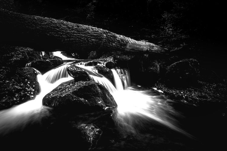 Long Exposure Waterfall Flowing Water Rock Water Scenics - Nature Motion No People Rock - Object Nature Solid Beauty In Nature Forest Tree Blurred Motion Flowing Land Rock Formation Outdoors Power In Nature Falling Water Rainforest Ilsefälle Ilsetal Monochrome