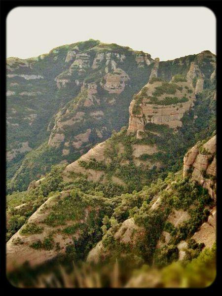 Nature Mountains Landscape Catalunya Descobreixcatalunya Sant Llorenç Del Munt