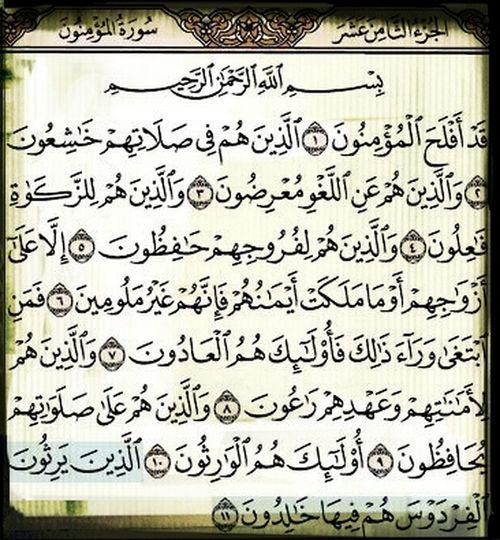 Lectura Del Corán Mezquita Azul.Estambul. Mohammed The Prophet Of Allah Islamabad