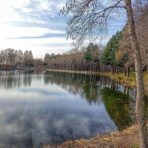 """Tappa obbligatoria per i visitatori di Gambarie è il piccolo Lago di Rumia . Incastonato come un Lucente Smeraldo nella Vegetazione , circondato dalle profumatissime e colorate Ginestre dei """"carbunari"""" è una presenza importante per tutta la zona."""