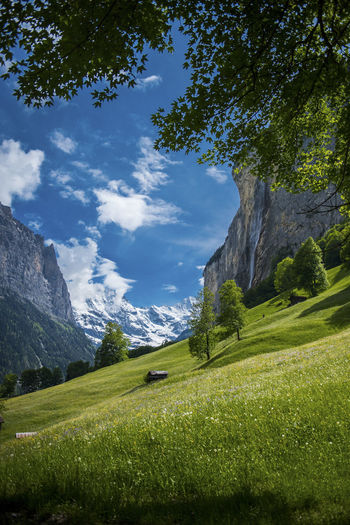 Beauty In Nature Cloud - Sky Day Environment Field Glacier Grass Green Color Idyllic Land Landscape Mountain Nature No People Non-urban Scene Outdoors Plant Rolling Landscape Scenics - Nature Sky Tranquil Scene Tranquility Tree