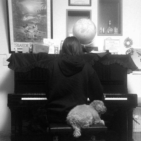 Mario Dog Piano Practice CsikosPost課題曲