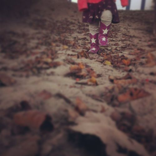 Baby Boots crunching in the sandy leaves of fall Fallinthechi Thisischicago Kayasol Exploringcitynaturel