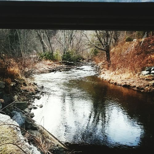 Reflections Middle Branch of the New River in Winter Peace Quiet Outdoors Woods Riverside