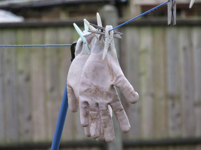 Close-up of gloves hanging on clothesline
