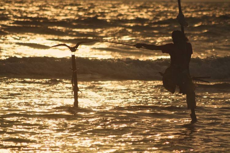 Silhouette of people in sea at sunset