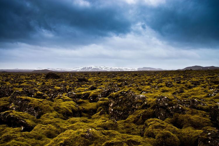 Scenic View Of Moss Covered Lava Field Against Cloudy Sky