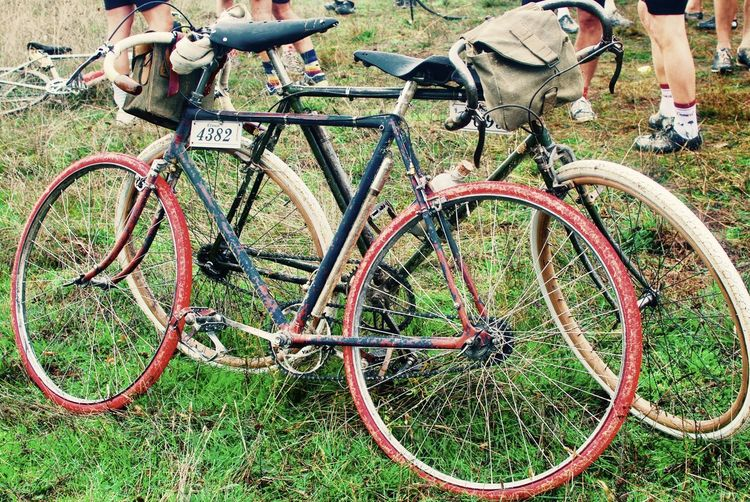 Travel Vintage Bike Bicycle Bicycle Rack Bicycles Chianti Area Day Eroica Field Grass Green Color Italy Italy Bike Land Vehicle Low Section Mode Of Transport Nature No People Outdoors Radda In Chianti Stationary Transportation Vintage Cycle