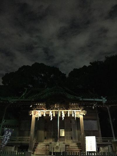 On The Road Shrine Yoyogihachimanguu Darkness And Light